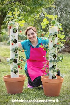 15 Unusual Vegetable Garden Ideas pertaining to 12 Backyard Vegetable Garden Ideas, Most of the Creative as well as Beautiful Too Strawberry Planters, Strawberry Garden, Strawberry Tower, Back Gardens, Outdoor Gardens, Vertical Gardens, Vertical Planter, Outdoor Pots, Growing Plants