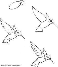 ideas for humming bird sketch hummingbird drawing Bird Drawings, Doodle Drawings, Doodle Art, Easy Drawings, Animal Drawings, Drawing Sketches, Drawing Step, Drawing Drawing, Random Drawings