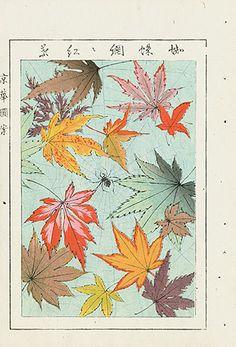 Japanese Design Woodblock Prints c1900