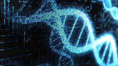 Será que existe o DNA do empreendedor?
