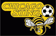 Chicago Sting aim for 2017 NASL debut; Peter Wilt involved