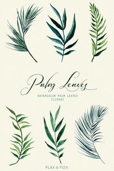 Palm Leaves Watercolor Elements hand painted clipart by flaxandfox
