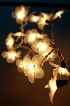15 best flower string fairy lights images on pinterest bedroom 20 garland flower light white flower string lights for bedroom living room patio indoor christmas decorative mightylinksfo