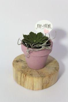 Gastgeschenke - Succulente (dunkelgrün) mini, rosa  - ein Designerstück von Die-Fraeuleins-Krims-u-Krams bei DaWanda