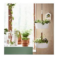 IKEA - BITTERGURKA, Ampel, Häng die Kräuterampel ans Fenster und hake sie einfach ab, wenn frisches Grün beim täglichen Kochen oder Essen gewünscht wird.Zur Gestaltung eines hängenden Gartens kann man mehrere Ampeln miteinander verhaken.Kann direkt bepflanzt oder für Topfpflanzen benutzt werden.
