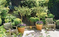 Susan Hampshire's garden apparently. Nice pots, Susan!