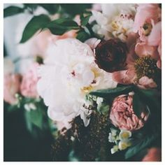What is your favorite flower? | Photo: @natalienorton | Sycamore Street Press