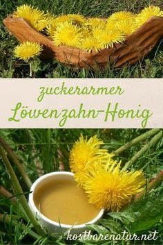 Making dandelion honey without granulated sugar - Löwenzahn-Honig ohne Kristallzucker herstellen Dandelion syrup is a delicious alternative to traditional honey. Unfortunately, many recipes contain a lot of industrial sugar. Here the healthier option! Healthy Eating Tips, Healthy Nutrition, Clean Eating, Taraxacum Officinale, Vegetable Drinks, Vegan Sweets, Natural Cosmetics, Insta Photo, Healthy Options