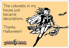 The cobwebs in my house just became decorations. Thanks, Halloween!