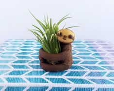 Air Planter Sloth, Gift Mom, Air Planter, Tillandsia Sloth Air Plants, Gardener Gift, Gift for Her, Gift Mom, Spring Decor, Gift Under 30
