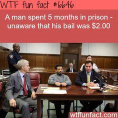 Two dollar bail #fail #wtffunfact #omg