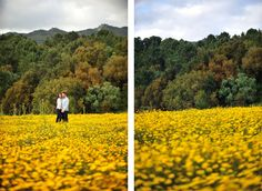 Parque Natural Sintra Cascais sessao noivado antes do casamento na natureza campo de flores vista Serra