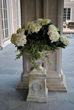 hydrangea with ivy in urn on pedestal.