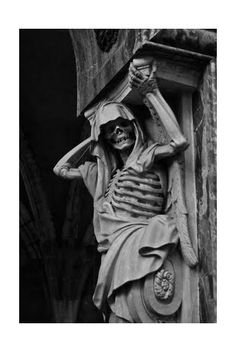 I love Skeletons in architecture.