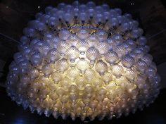 Jellyfish Lights!