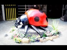 Butterfly Park, Bee Farm & Insect World at Genting Highlands Tourist Att...
