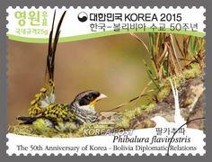 The 50th Anniversary of Korea-Bolivia Diplomatic Relations, April 24 2015, Phibalura flavirostris, 한국-볼리비아 수교 50주년, 2015년 4월 24일, 팔카추파