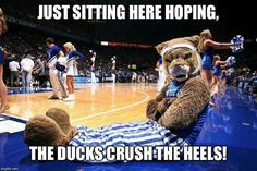 Oregon trails North Carolina at the half 36 to Way too many turnovers for the Ducks. University Of Kentucky, Kentucky Wildcats, College Cheerleading, Go Big Blue, North Carolina, How Are You Feeling, Feelings, Sports, Ducks