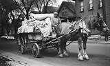 "Horse-drawn wagon collecting ""junk"" - Ask.com"