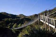 Welcome to a place of excitement and adventure, where visitors can feel the rush of the Cometline ride, experience the thrill of the Jet boat, walk the heights of New Zealand's longest swing. New Zealand, In The Heights, Boat, Adventure, Park, Places, Holiday, Nature, Pictures