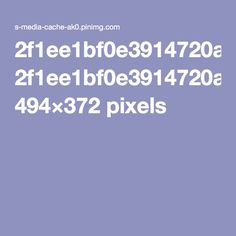 2f1ee1bf0e3914720add1026eb3f69e9.jpg 494×372 pixels