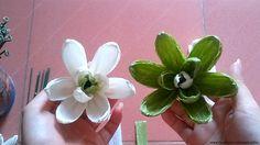 [How to make] Magnolia Sieboldii paper flower - Hướng dẫn làm hoa mộc lan: https://www.youtube.com/watch?v=fpf86zhBWRE&list=PLoh5l3A2Cl68yQ9OoUUKx75XTki8ZL775&index=20