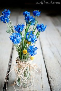 Blue Wedding Flowers Love this idea for tables! i'd love to have lot of color! but simple flowers on the tables! Simple Flowers, Wild Flowers, Beautiful Flowers, Beach Flowers, Simply Beautiful, Wedding Bouquets, Wedding Flowers, Cornflower Wedding Bouquet, Rose Bouquet
