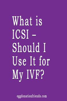 What is ICSI? Why is ICSI used? Our fertility experts explain the procedure itself, and share their tips and recommendations. Trying To Get Pregnant, Getting Pregnant, Tattoo Templates, Egg Donation, Trying To Conceive, Fertility, Need To Know, Knowledge, How To Get
