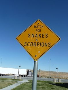 Watch for certain and impending death coming from anywhere... Great!
