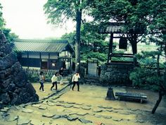 Otw to Hikone-Jo Castle. Japan