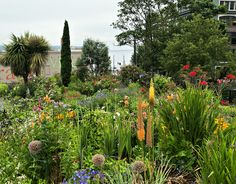 Gardens of Seattle | Flickr - Photo Sharing!