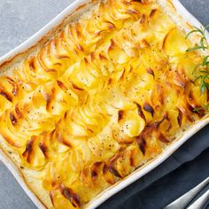 Comfort food at its best – a potato gratin always hits the mark, but when it's combined with a superior cheese it's joy on a plate! Potato Dishes, Potato Recipes, Baby Food Recipes, Cooking Recipes, Potato Pave, Potatoes Dauphinoise, Scalloped Potatoes And Ham, Musaka, French Dishes