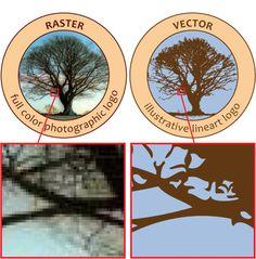raster and vector logo