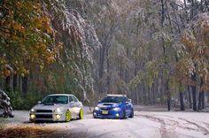 Here we see Subaru in its natural habitat!