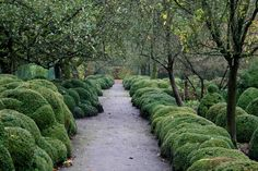 Belgium Landscape Architect Jacques Wirtz Gardens | Out of the box: The Private Garden of Jacques Wirtz