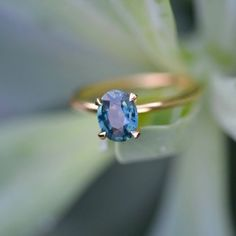 A teal blue, oval sapphire with hints of green in it