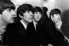 Richard Starkey, George Harrison, Paul McCartney, and John Lennon (Bing Images!)