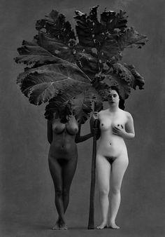 Flor Garduño - Eden, 2001 at David Guiraud, Paris