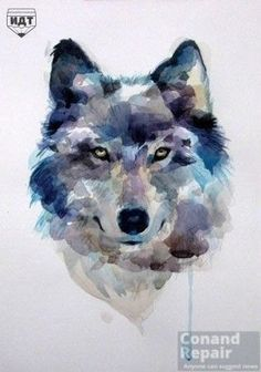 How to draw a wolf? #Draw a #Wolf #watercolor Step 7 of 7 ....Push and chose ....