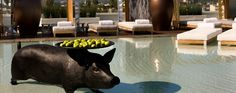 Never knew this little piggy is at the SLS Hotel in Beverly Hills! Now I want to go up there ...