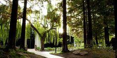 The Freedom Hall & Gardens @ Santa Clara CA Provided by: The Freedom Hall and Gardens