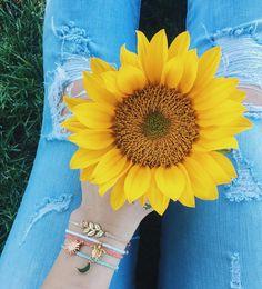 Here comes the sun-flower x @autumrainn