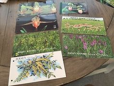 Jersey Stamps, Flowers, Orchids, Thermatics  | eBay Orchids, Stamps, Flowers, Ebay, Art, Seals, Art Background, Kunst, Performing Arts