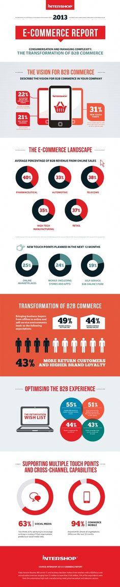 eCommerce Report 2013