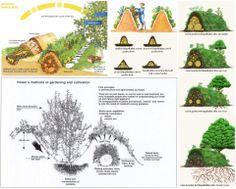 Základem záhonu je navršená hromada trouchnivějícího dřeva, jenž se stará dlouhodobě o výživu rostlin.dřevěné podloží jsou doporučovány jabloně, olše, topoly, vrby nebo břízy, nedoporučují se třešně, akáty, ořechy.   Záhony se doporučují vyšší, čím vyšší je záhon, tím méně je nutno zalévat (od druhého roku od založení záhonu).  Založený záhon, který nevyžaduje zálivku, by měl být až 2 metry vysoký. Záhon se bude v průběhu let procesem tlení podkladového materiálu snižovat.