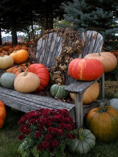 Fall Decor: Leaves, Pumpkins, Mums. Decorate an Old Bench for the Season.