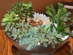 mini jardim vaso de barro - Pesquisa Google