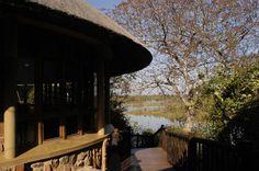Mopani Rest Camp, Northern Region, Kruger National Park.