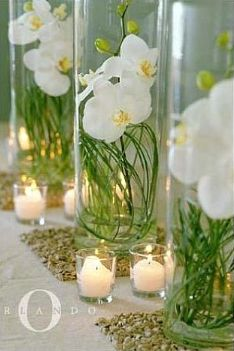 reception decor - table decor - centerpiece - phalaenopsis orchids