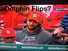 "Waino just doing some ""dolphin flips""     *insert fin movements here*"